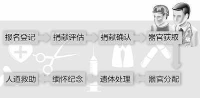 中国开展器官捐献试点十余年仅659例自愿捐献