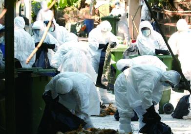香港如何防御禽流感?