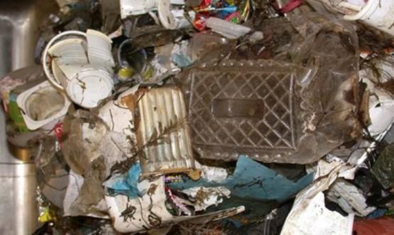 泰晤士河塑料垃圾恐威胁海洋生物