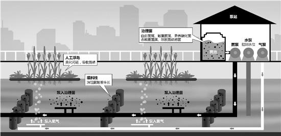 """杭州治水搬来""""细菌兵团"""" 黑臭河道变样(图)"""