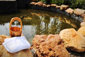 冬日必去的广东温泉,在哪里?
