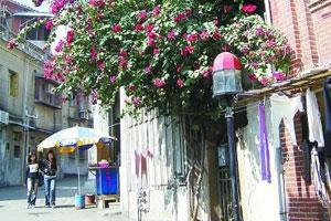 走街串巷 探寻温暖如春的厦门美味
