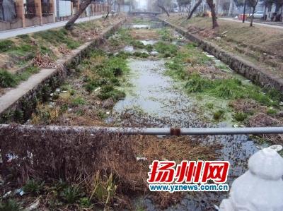 """垃圾围堵河道盼""""清肠"""" 建设局将对杨庄河清淤(图)"""
