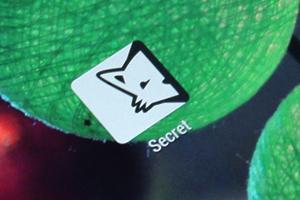 匿名社交应用Secret成立6个月估值超1亿美元
