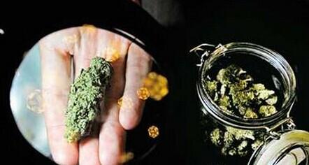 大麻可造廉价优质电池 用于移动设备