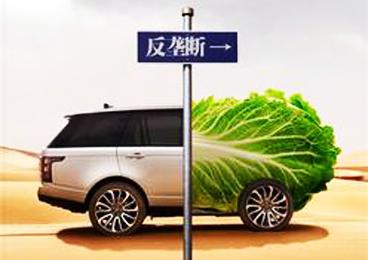 陈小燕:社会公众应当逐步提升反垄断意识