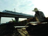 图片故事:城轨旁的晒木工