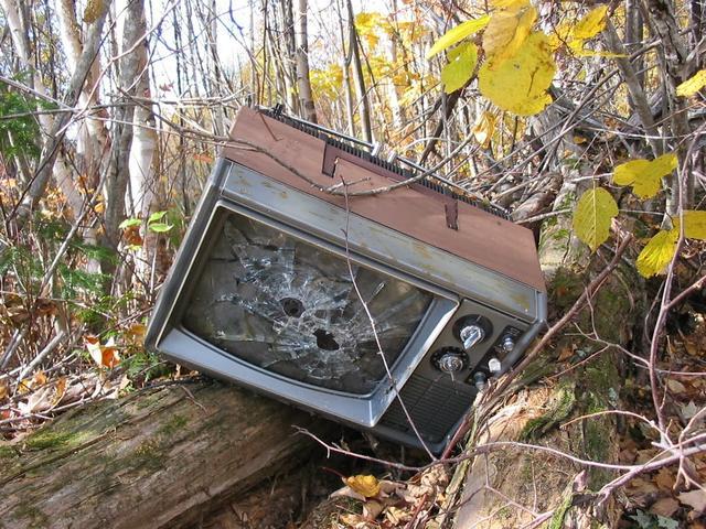 AC尼尔森:美国人真的在逃离电视
