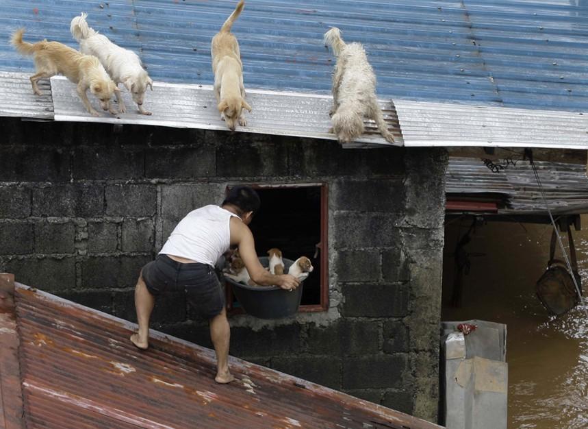 死亡的人???-yf_马尼拉洪灾造成至少11人死亡,一百多万人受到影响.